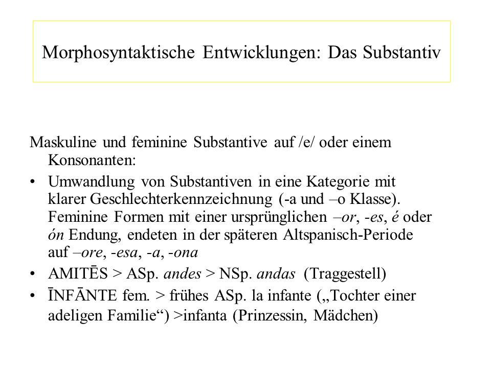 Morphosyntaktische Entwicklungen: Das Substantiv Maskuline und feminine Substantive auf /e/ oder einem Konsonanten: Umwandlung von Substantiven in ein