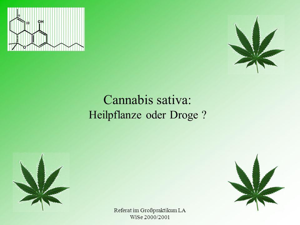 Referat im Großpraktikum LA WiSe 2000/2001 Cannabis sativa: Heilpflanze oder Droge ?