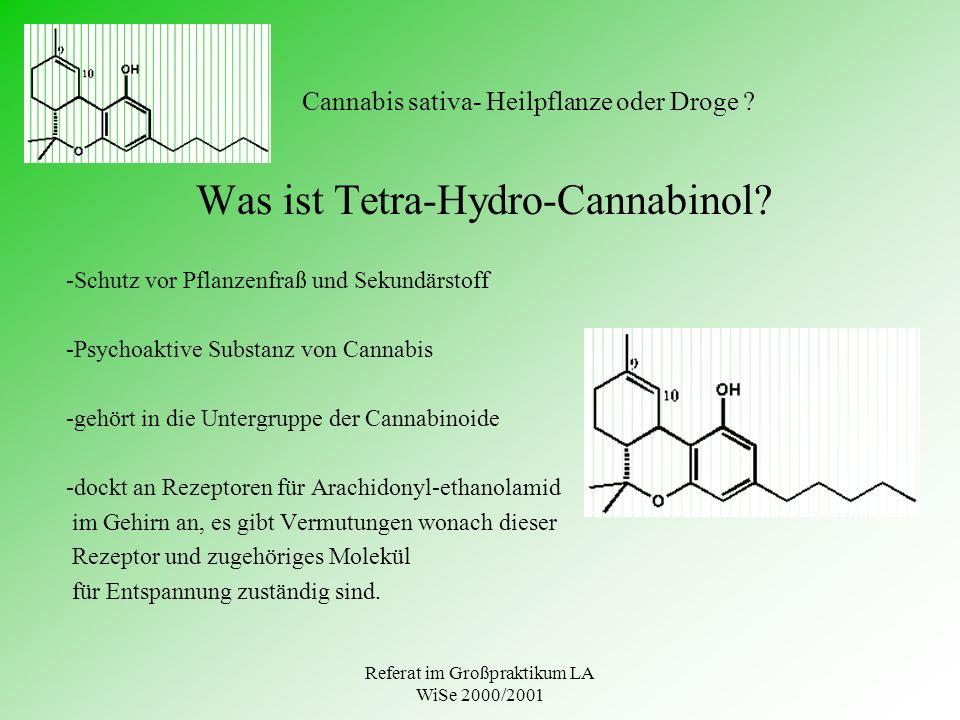 Referat im Großpraktikum LA WiSe 2000/2001 Cannabis sativa- Heilpflanze oder Droge ? Was ist Tetra-Hydro-Cannabinol? -Schutz vor Pflanzenfraß und Seku