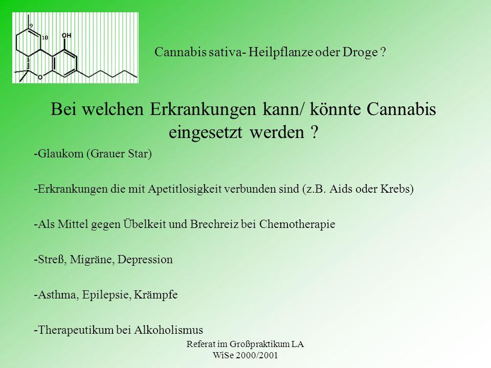 Referat im Großpraktikum LA WiSe 2000/2001 Cannabis sativa- Heilpflanze oder Droge ? Bei welchen Erkrankungen kann/ könnte Cannabis eingesetzt werden