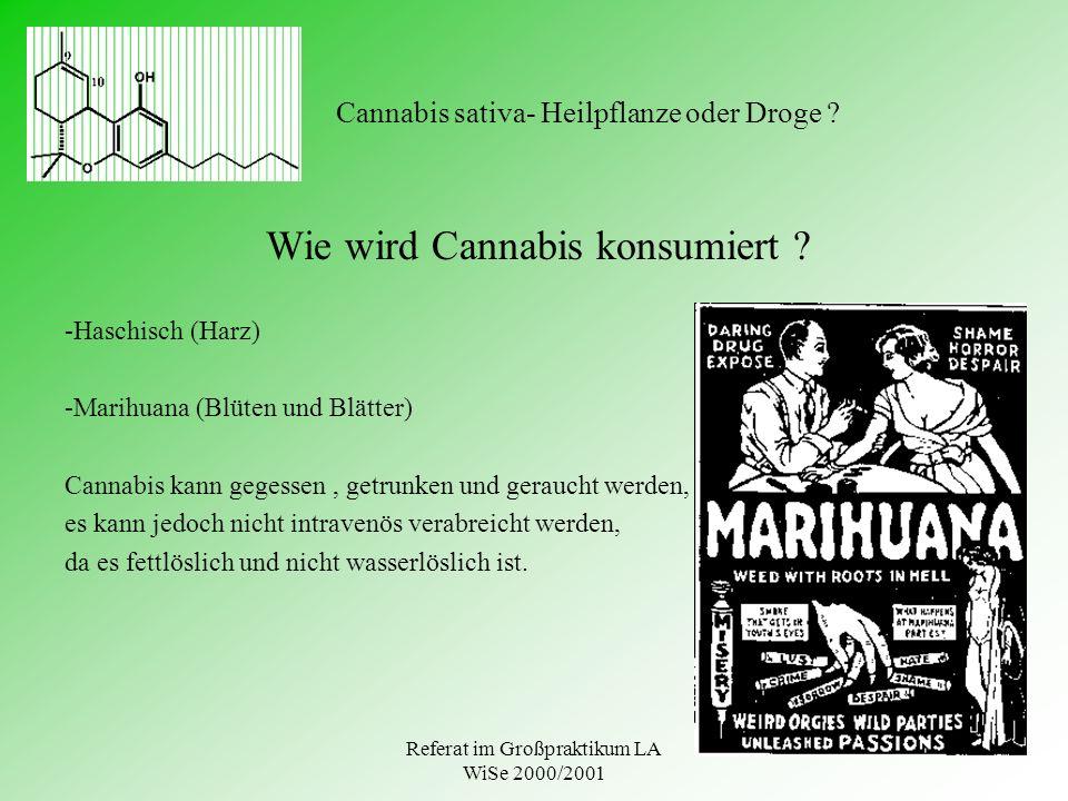 Referat im Großpraktikum LA WiSe 2000/2001 Cannabis sativa- Heilpflanze oder Droge ? Wie wird Cannabis konsumiert ? -Haschisch (Harz) -Marihuana (Blüt