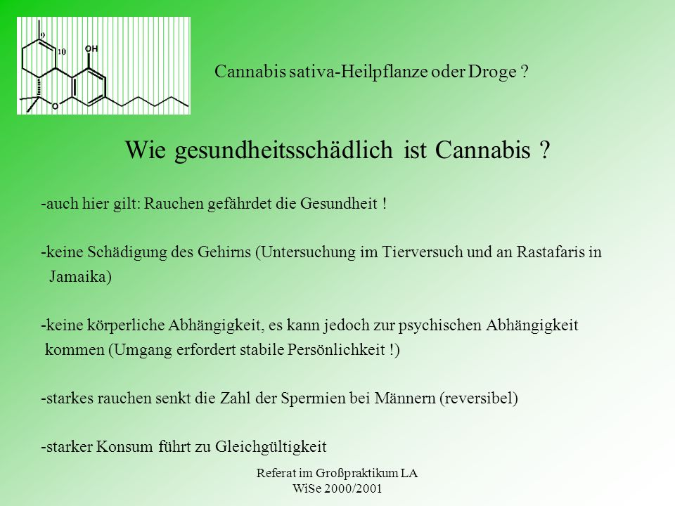 Referat im Großpraktikum LA WiSe 2000/2001 Cannabis sativa-Heilpflanze oder Droge ? Wie gesundheitsschädlich ist Cannabis ? -auch hier gilt: Rauchen g