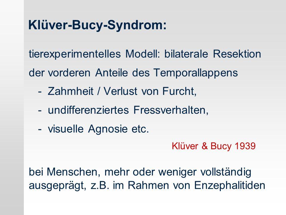 Klüver-Bucy-Syndrom: tierexperimentelles Modell: bilaterale Resektion der vorderen Anteile des Temporallappens - Zahmheit / Verlust von Furcht, - undi