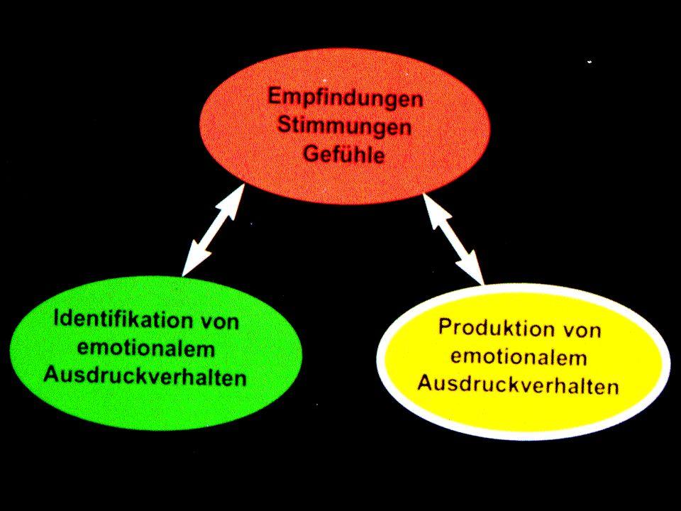 Emotionalität und Hirnschädigung: Orbitalhirnsyndrom catastrophic reaction / Lateralität Klüver-Bucy-Syndrom etc.