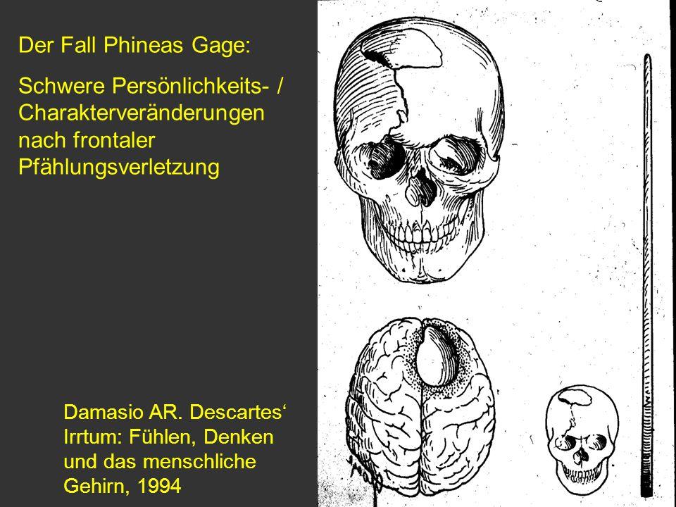 Damasio AR. Descartes Irrtum: Fühlen, Denken und das menschliche Gehirn, 1994 Der Fall Phineas Gage: Schwere Persönlichkeits- / Charakterveränderungen