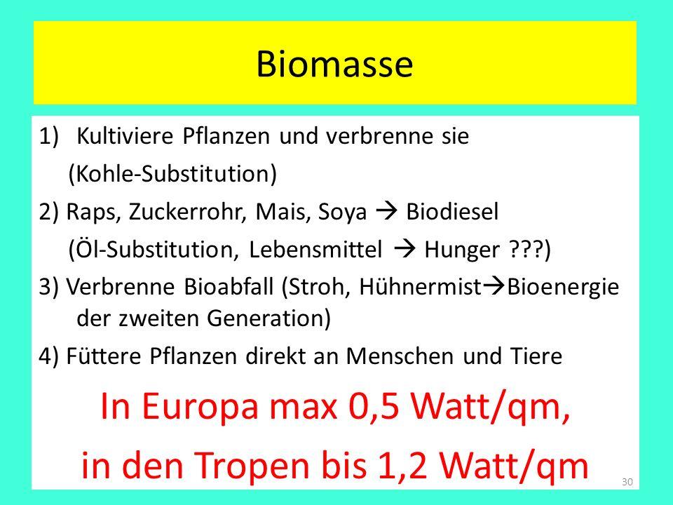 Biomasse 1)Kultiviere Pflanzen und verbrenne sie (Kohle-Substitution) 2) Raps, Zuckerrohr, Mais, Soya Biodiesel (Öl-Substitution, Lebensmittel Hunger