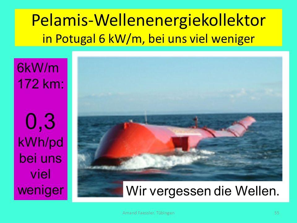 Pelamis-Wellenenergiekollektor in Potugal 6 kW/m, bei uns viel weniger Amand Faessler. Tübingen55 6kW/m 172 km: 0,3 kWh/pd bei uns viel weniger Wir ve