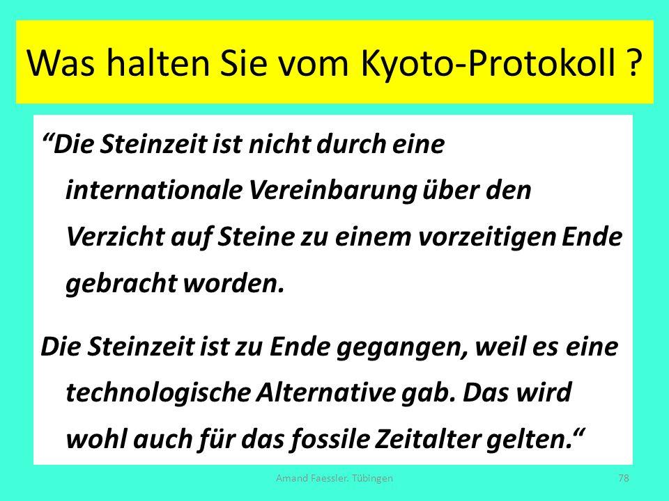 Was halten Sie vom Kyoto-Protokoll ? Die Steinzeit ist nicht durch eine internationale Vereinbarung über den Verzicht auf Steine zu einem vorzeitigen