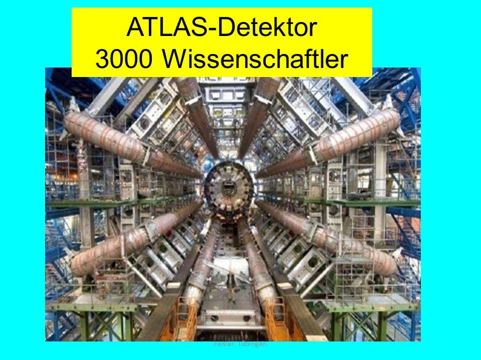 Fäßler, Tübingen ATLAS-Detektor 3000 Wissenschaftler