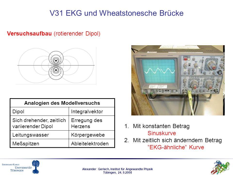 Alexander Gerlach, Institut für Angewandte Physik Tübingen, 24. 9.2008 V31 EKG und Wheatstonesche Brücke Versuchsaufbau (rotierender Dipol) Analogien