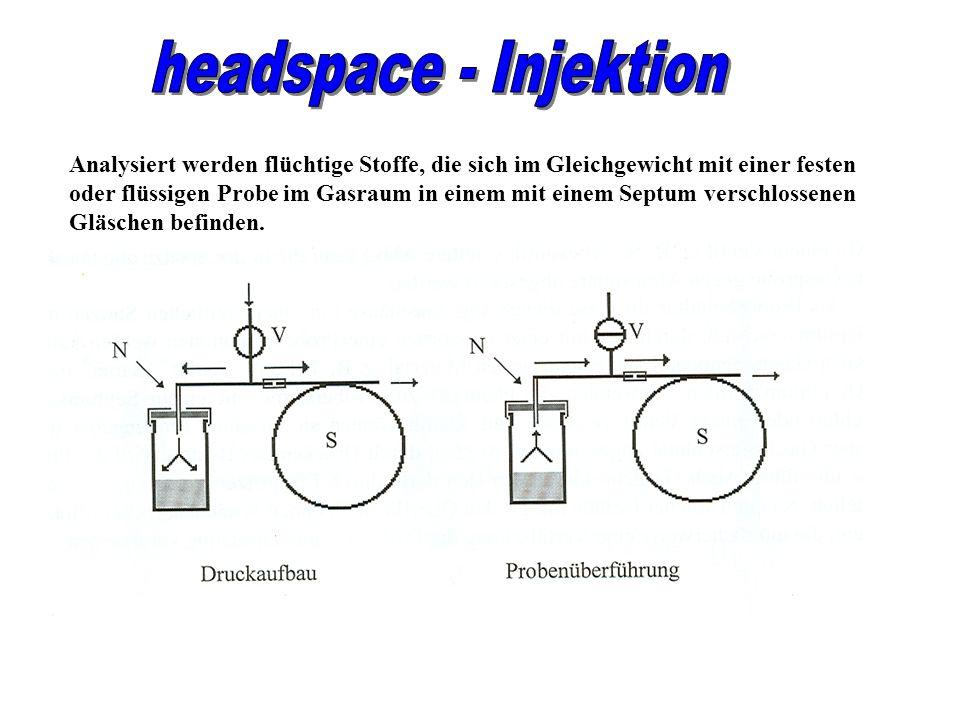 Analysiert werden flüchtige Stoffe, die sich im Gleichgewicht mit einer festen oder flüssigen Probe im Gasraum in einem mit einem Septum verschlossene