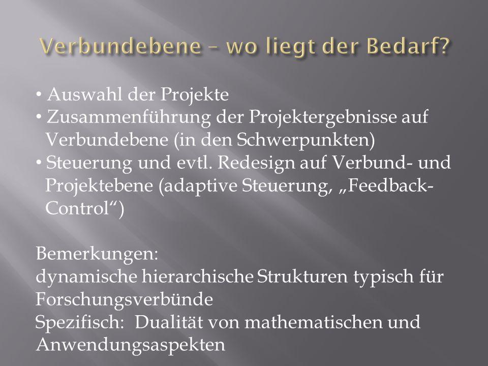 Auswahl der Projekte Zusammenführung der Projektergebnisse auf Verbundebene (in den Schwerpunkten) Steuerung und evtl.