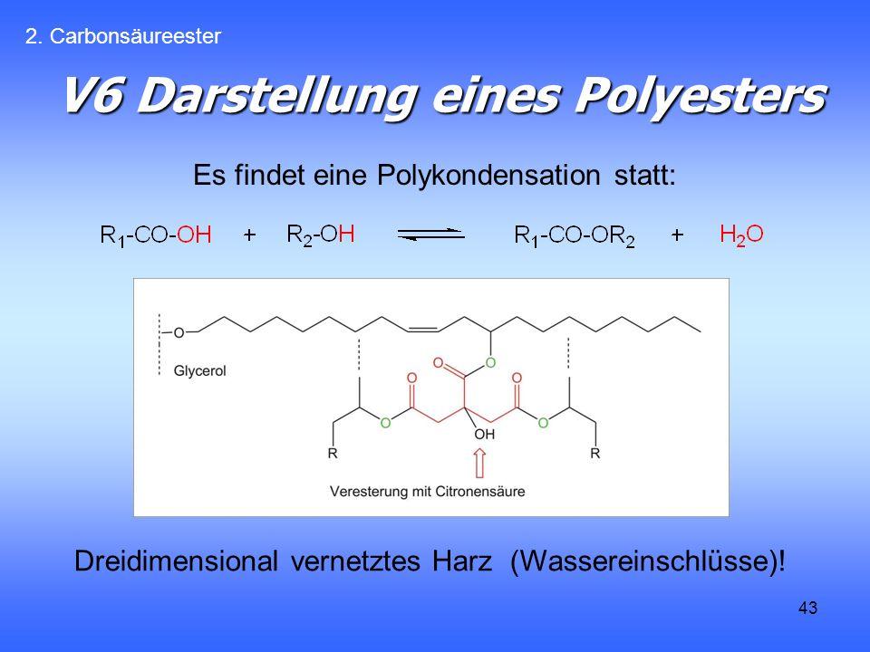43 V6 Darstellung eines Polyesters Es findet eine Polykondensation statt: 2.