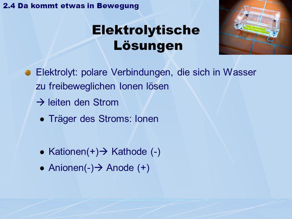 Elektrolytische Lösungen Elektrolyt: polare Verbindungen, die sich in Wasser zu freibeweglichen Ionen lösen leiten den Strom Träger des Stroms: Ionen