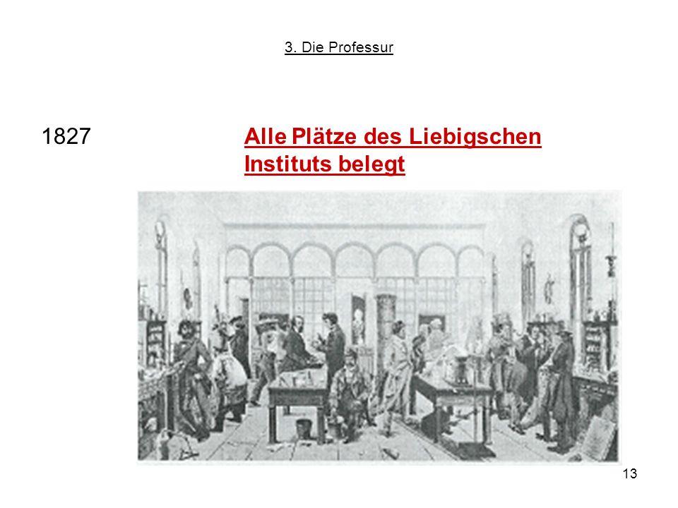 13 1827Alle Plätze des Liebigschen Instituts belegt 3. Die Professur