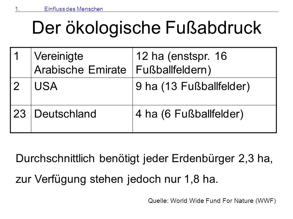 3.4 Der Schwefel-Kreislauf Versuch Nr.