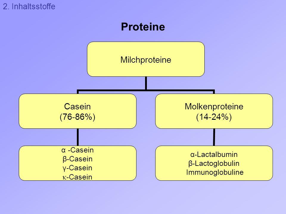 Proteine Milchproteine Casein (76-86%) α -Casein β-Casein γ-Casein κ -Casein Molkenproteine (14-24%) α-Lactalbumin β-Lactoglobulin Immunoglobuline 2.