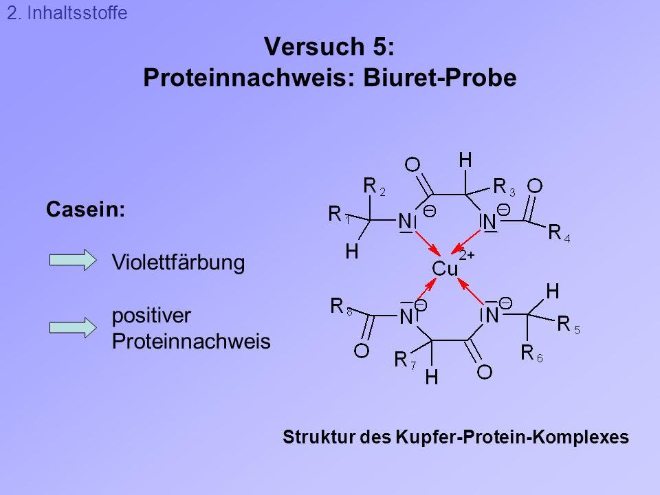 Versuch 5: Proteinnachweis: Biuret-Probe Struktur des Kupfer-Protein-Komplexes Casein: Violettfärbung positiver Proteinnachweis 2. Inhaltsstoffe