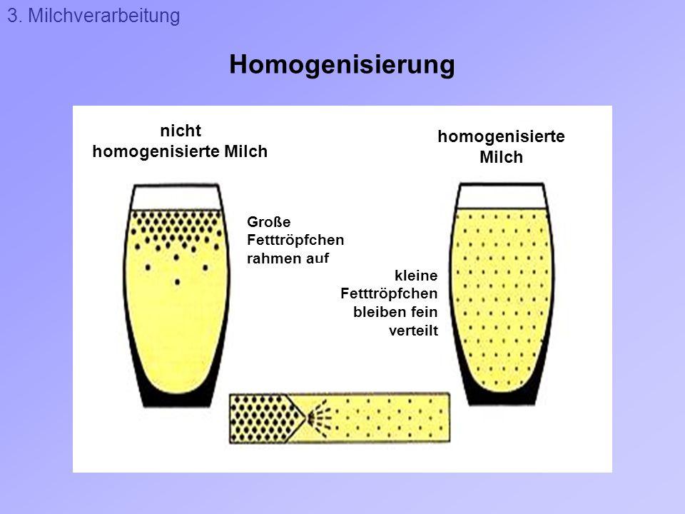Homogenisierung 3. Milchverarbeitung nicht homogenisierte Milch Große Fetttröpfchen rahmen auf kleine Fetttröpfchen bleiben fein verteilt