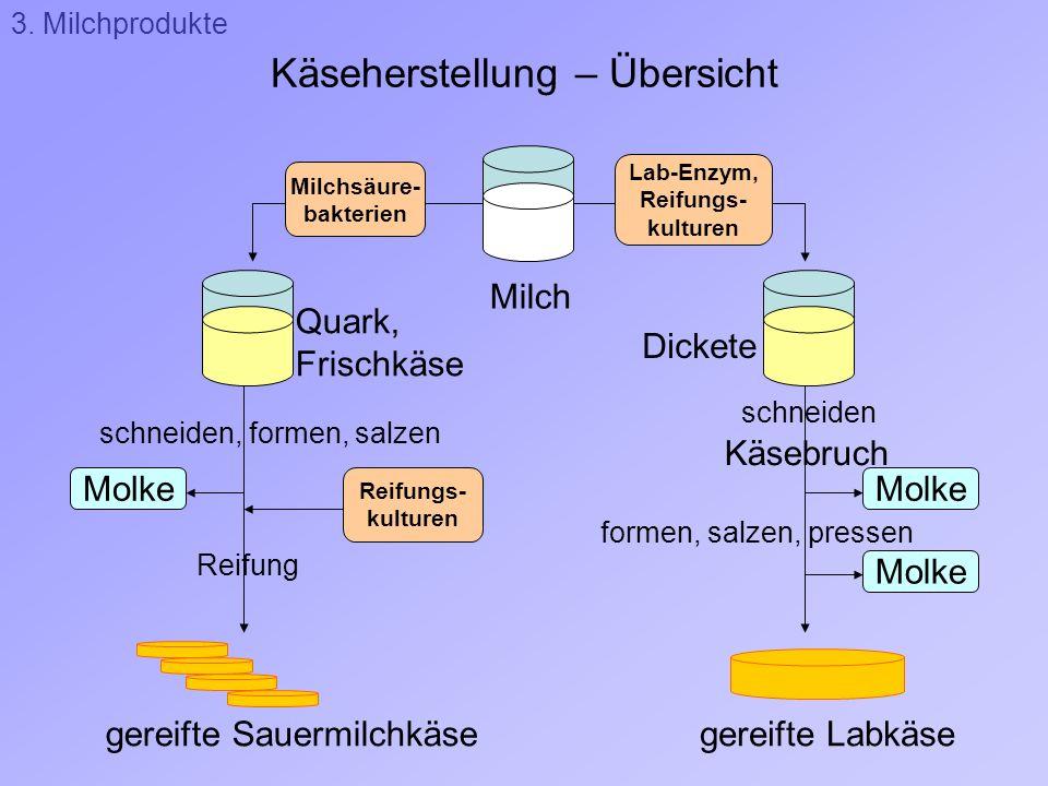 Käseherstellung – Übersicht 3. Milchprodukte Molke Milchsäure- bakterien Lab-Enzym, Reifungs- kulturen Milch Quark, Frischkäse Dickete Käsebruch schne