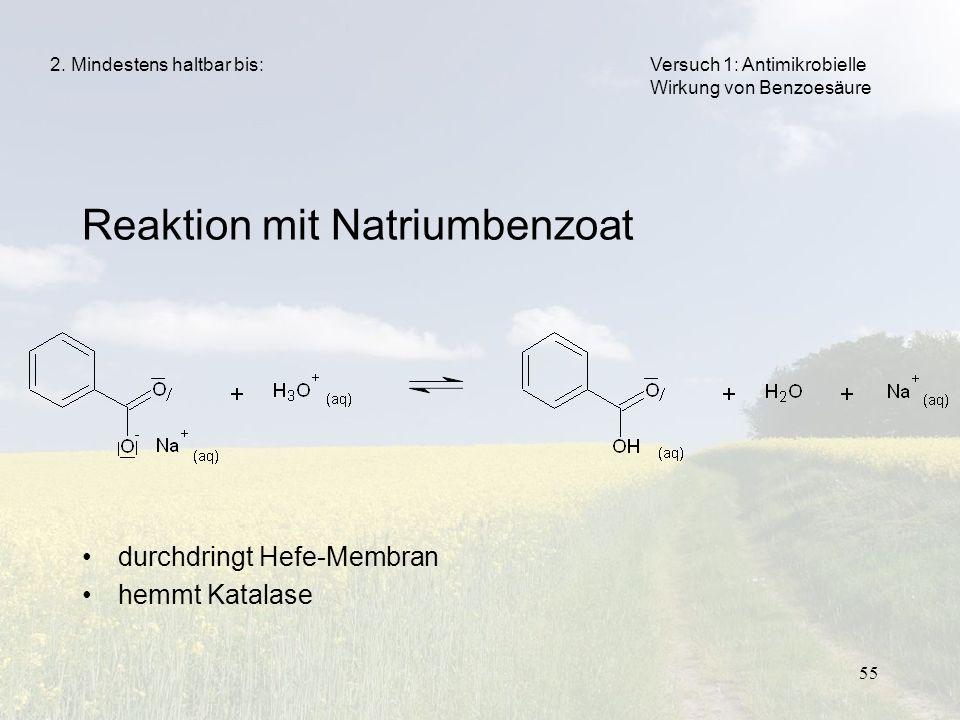 55 Reaktion mit Natriumbenzoat durchdringt Hefe-Membran hemmt Katalase 2. Mindestens haltbar bis:Versuch 1: Antimikrobielle Wirkung von Benzoesäure