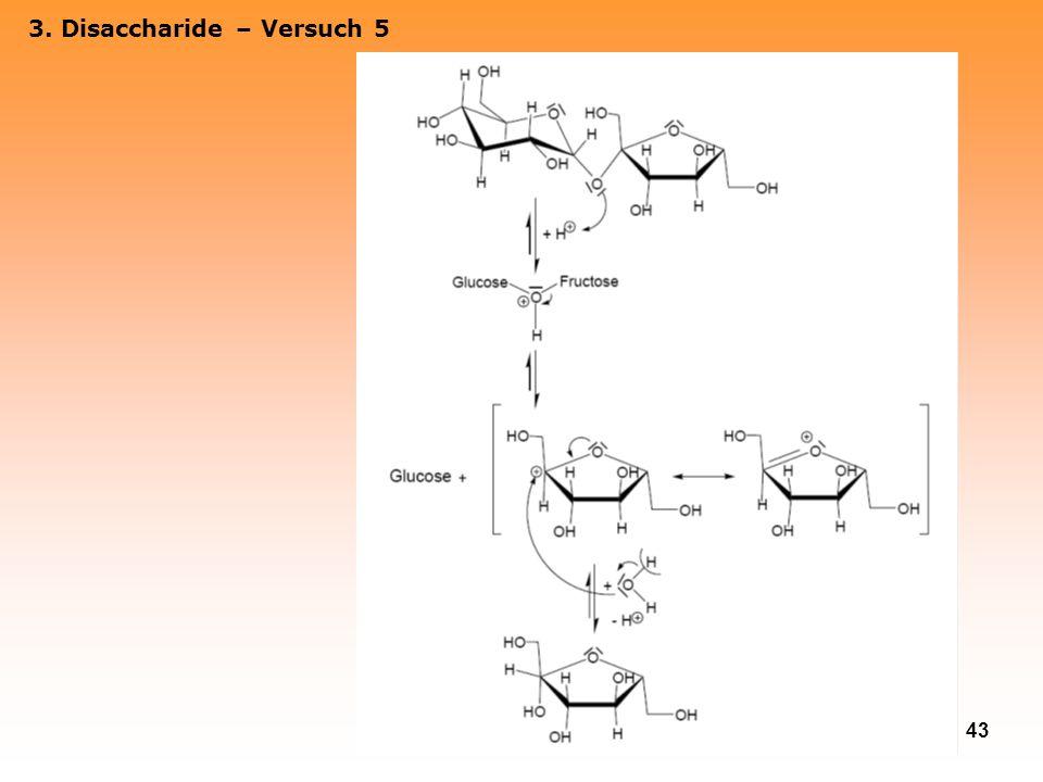 43 3. Disaccharide – Versuch 5