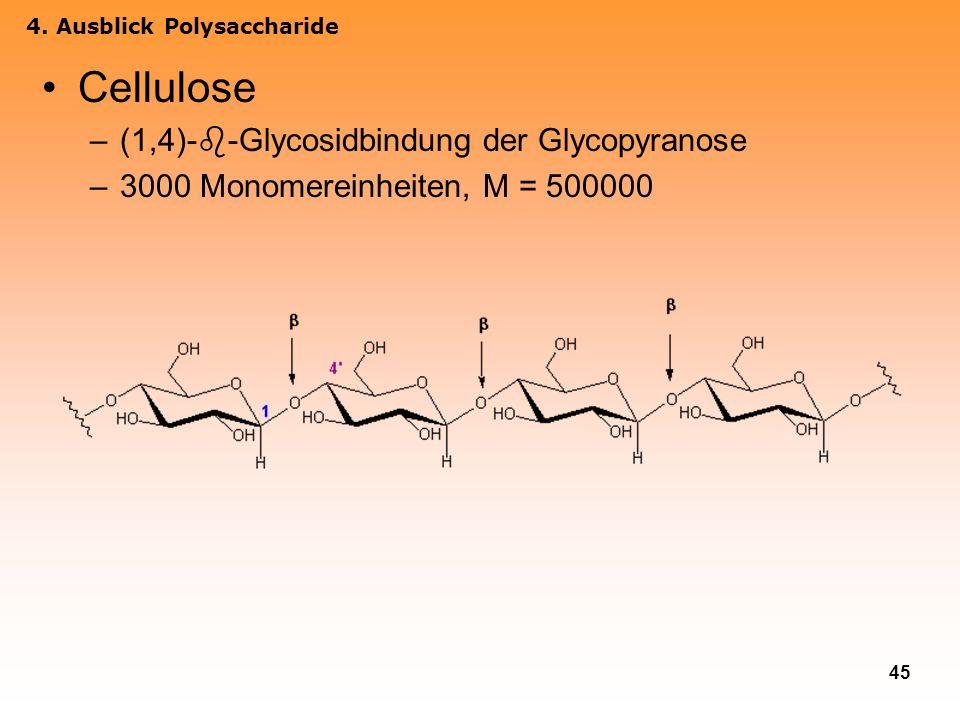 45 Cellulose –(1,4)- -Glycosidbindung der Glycopyranose –3000 Monomereinheiten, M = 500000 4. Ausblick Polysaccharide