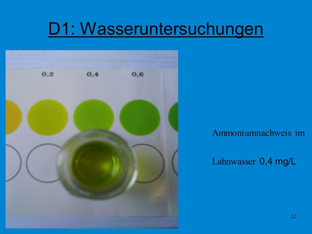 22 D1: Wasseruntersuchungen Ammoniumnachweis im Lahnwasser 0,4 mg/L