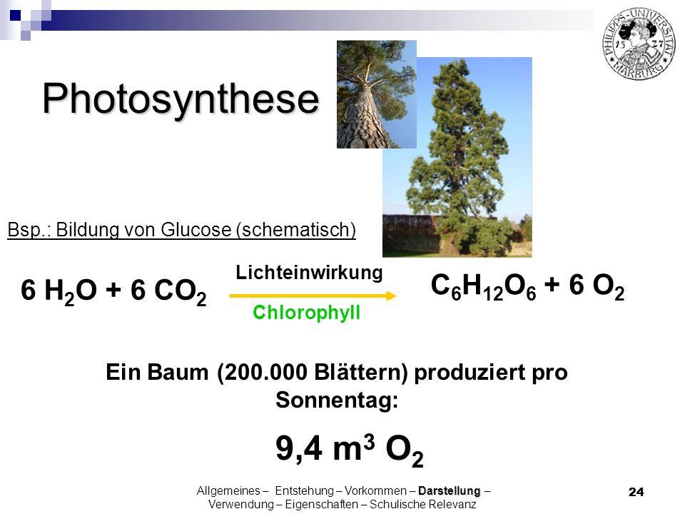 24 6 H 2 O + 6 CO 2 Lichteinwirkung C 6 H 12 O 6 + 6 O 2 Photosynthese Bsp.: Bildung von Glucose (schematisch) Ein Baum (200.000 Blättern) produziert