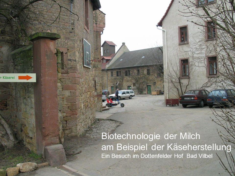 Biotechnologie der Milch am Beispiel der Käseherstellung Ein Besuch im Dottenfelder Hof Bad Vilbel