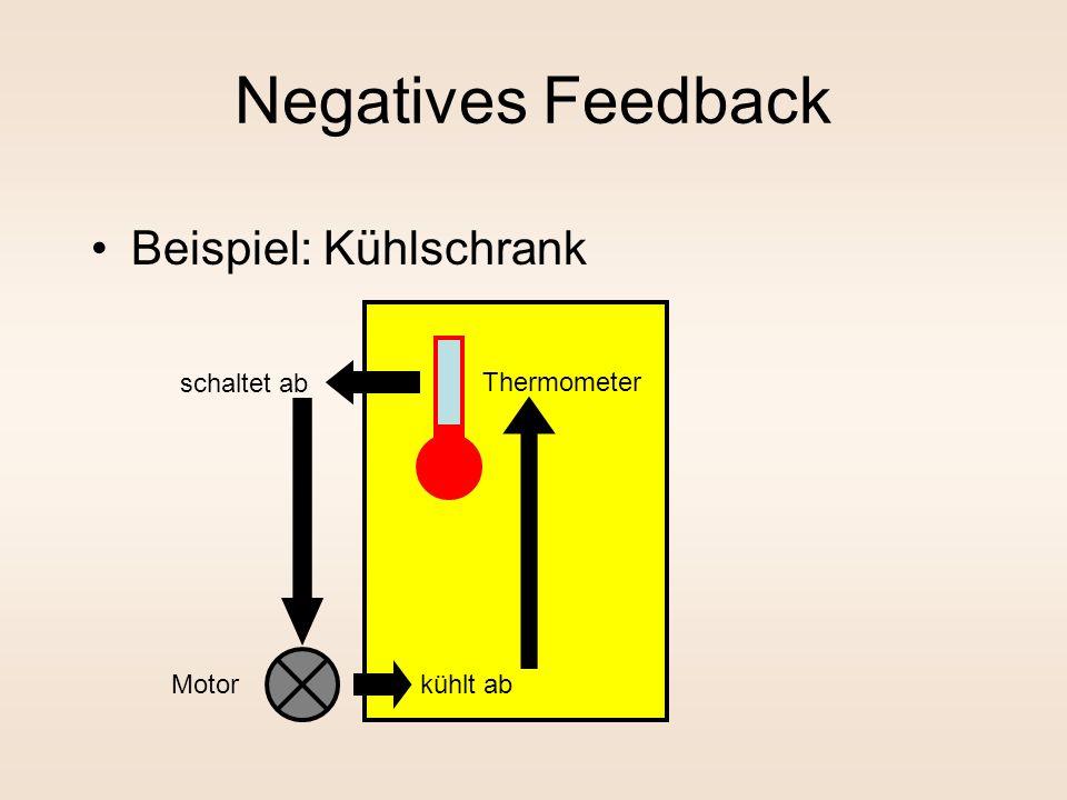 Negatives Feedback Beispiel: Kühlschrank Thermometer Motorkühlt ab schaltet ab