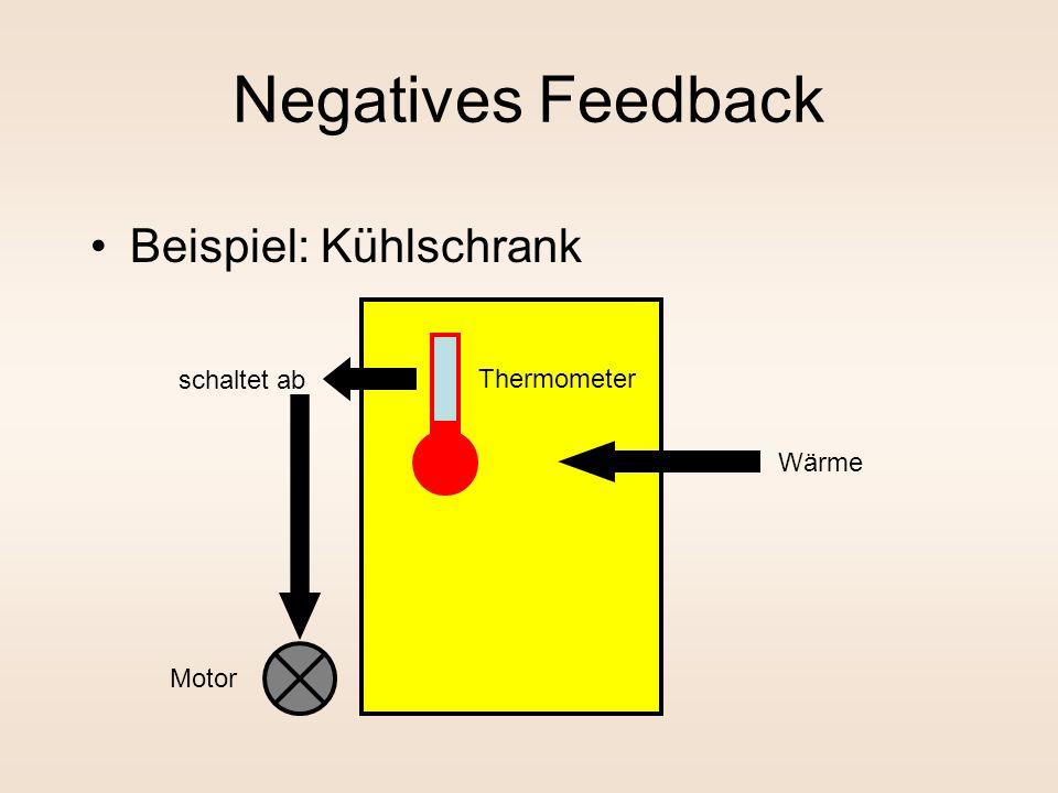 Negatives Feedback Beispiel: Kühlschrank Thermometer Motor schaltet ab Wärme