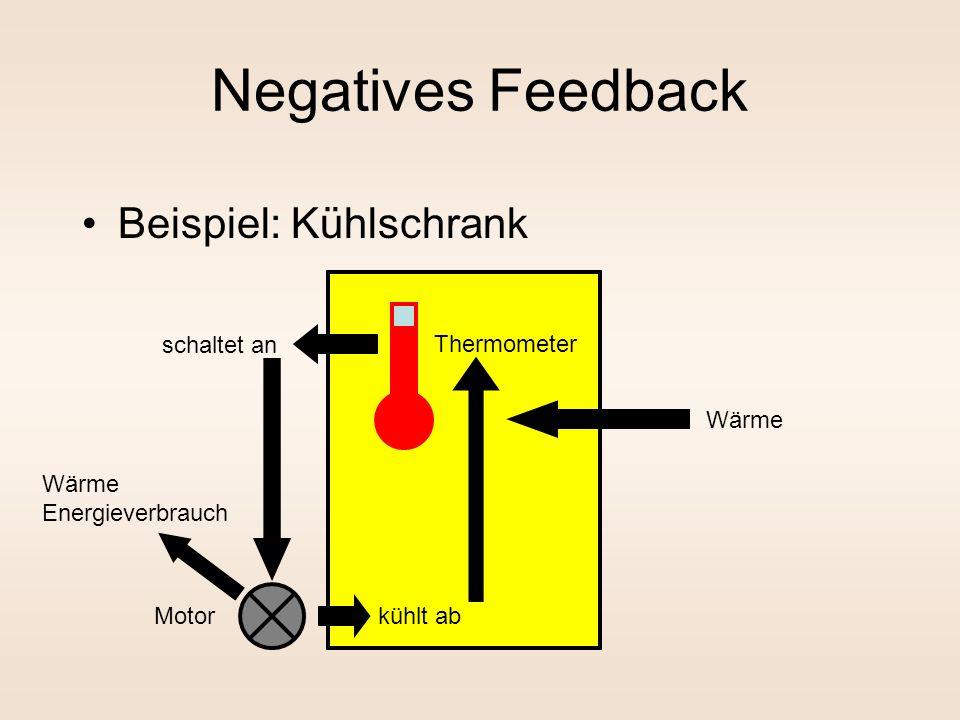 Negatives Feedback Beispiel: Kühlschrank Thermometer Motor schaltet an Wärme kühlt ab Wärme Energieverbrauch