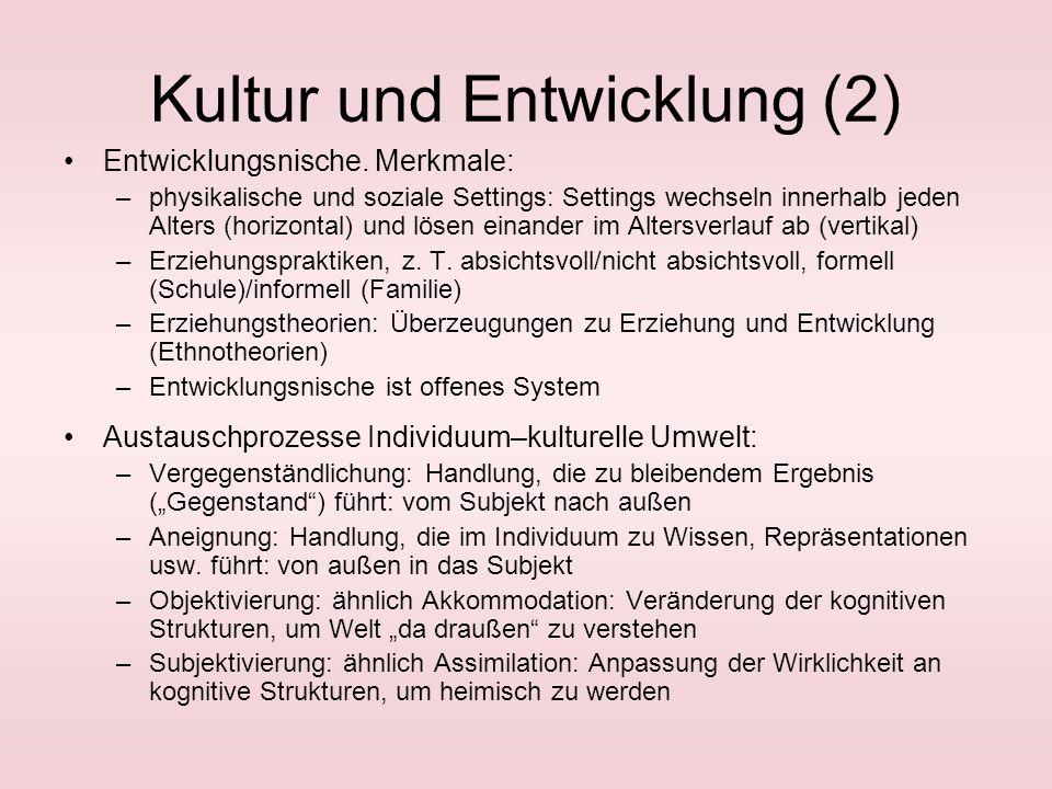 Kultur und Entwicklung (2) Entwicklungsnische.