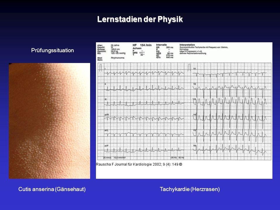 Tachykardie (Herzrasen)Cutis anserina (Gänsehaut) Prüfungssituation Lernstadien der Physik