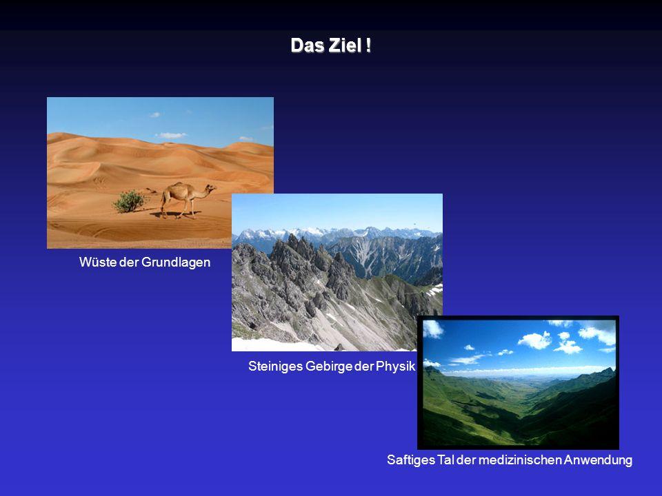 Das Ziel ! Wüste der Grundlagen Steiniges Gebirge der Physik Saftiges Tal der medizinischen Anwendung