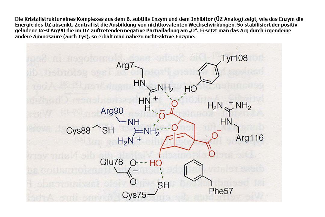 Die Kristallstruktur eines Komplexes aus dem B. subtilis Enzym und dem Inhibitor (ÜZ Analog) zeigt, wie das Enzym die Energie des ÜZ absenkt. Zentral