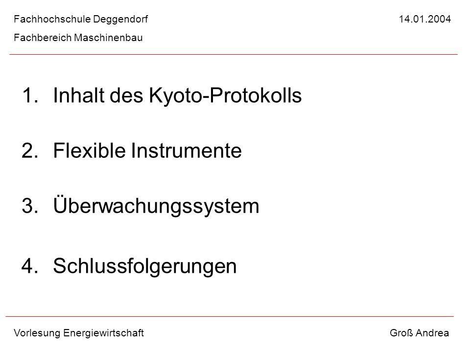1.Inhalt des Kyoto-Protokolls 2.Flexible Instrumente 3.Überwachungssystem 4.Schlussfolgerungen Fachhochschule Deggendorf 14.01.2004 Fachbereich Maschi