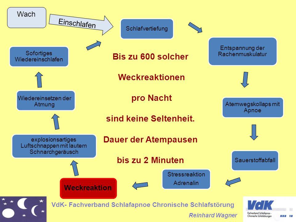 VdK- Fachverband Schlafapnoe Chronische Schlafstörung Reinhard Wagner Schlafvertiefung Entspannung der Rachenmuskulatur Atemwegskollaps mit Apnoe Saue