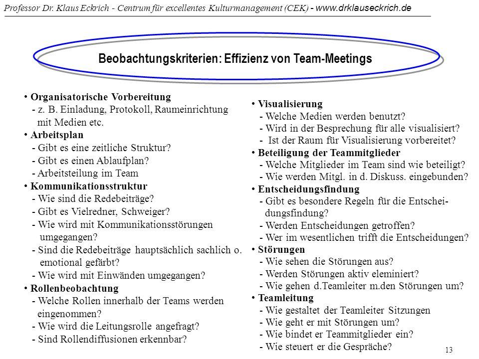 Professor Dr. Klaus Eckrich - Centrum für excellentes Kulturmanagement (CEK) - www.drklauseckrich.de 13 Beobachtungskriterien: Effizienz von Team-Meet