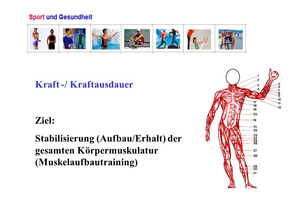Kraft -/ Kraftausdauer Ziel: Stabilisierung (Aufbau/Erhalt) der gesamten Körpermuskulatur (Muskelaufbautraining)
