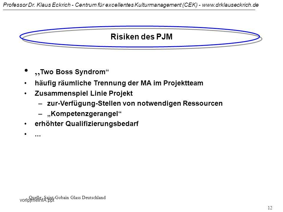 Professor Dr. Klaus Eckrich - Centrum für excellentes Kulturmanagement (CEK) - www.drklauseckrich.de vorlpjmeinfA.ppt 11 Chancen des PJM Systematische