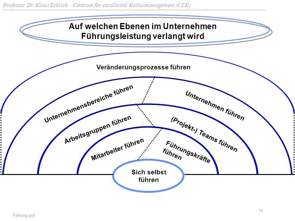 Professor Dr. Klaus Eckrich - Centrum für excellentes Kulturmanagement (CEK) Führung.ppt 14 Auf welchen Ebenen im Unternehmen Führungsleistung verlang