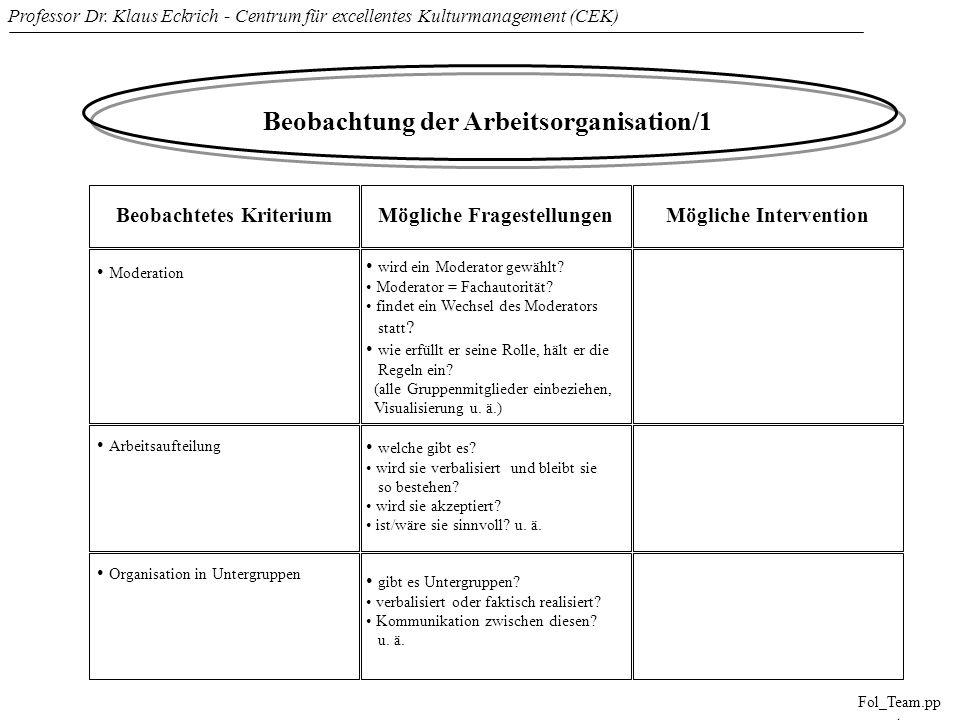 Professor Dr. Klaus Eckrich - Centrum für excellentes Kulturmanagement (CEK) Fol_Team.pp t Beobachtung der Arbeitsorganisation/1 Beobachtetes Kriteriu