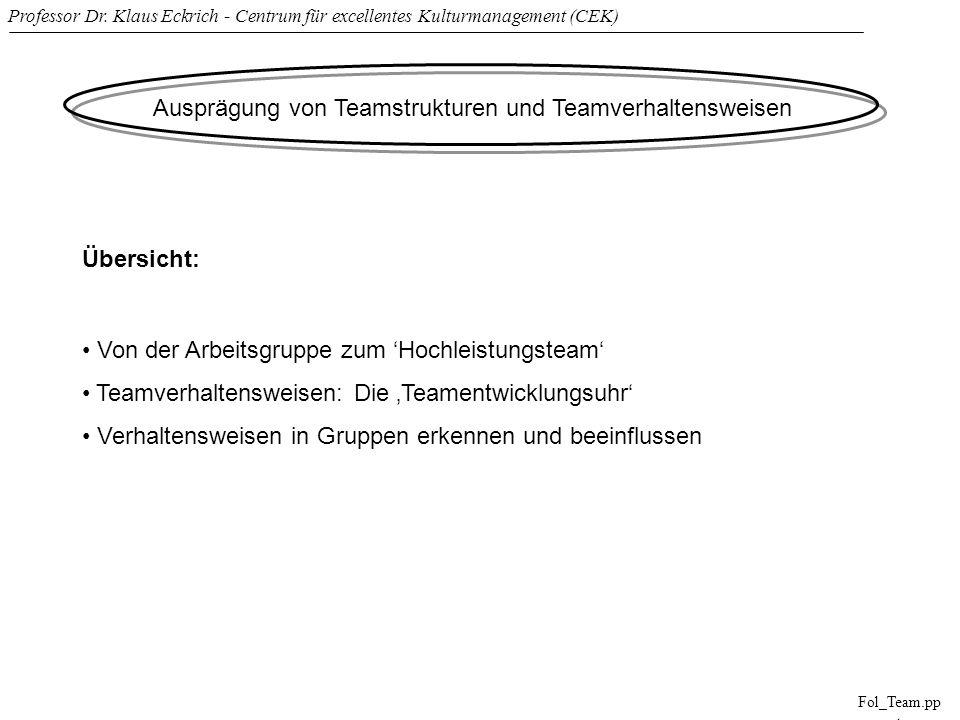 Professor Dr. Klaus Eckrich - Centrum für excellentes Kulturmanagement (CEK) Fol_Team.pp t Ausprägung von Teamstrukturen und Teamverhaltensweisen Über