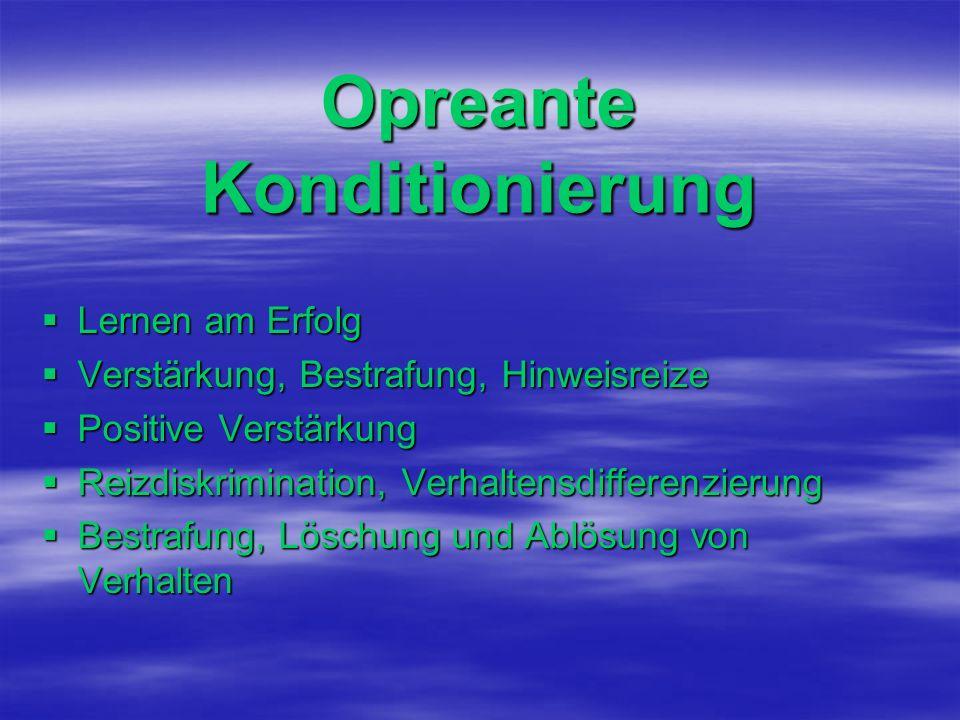Opreante Konditionierung Lernen am Erfolg Lernen am Erfolg Verstärkung, Bestrafung, Hinweisreize Verstärkung, Bestrafung, Hinweisreize Positive Verstä
