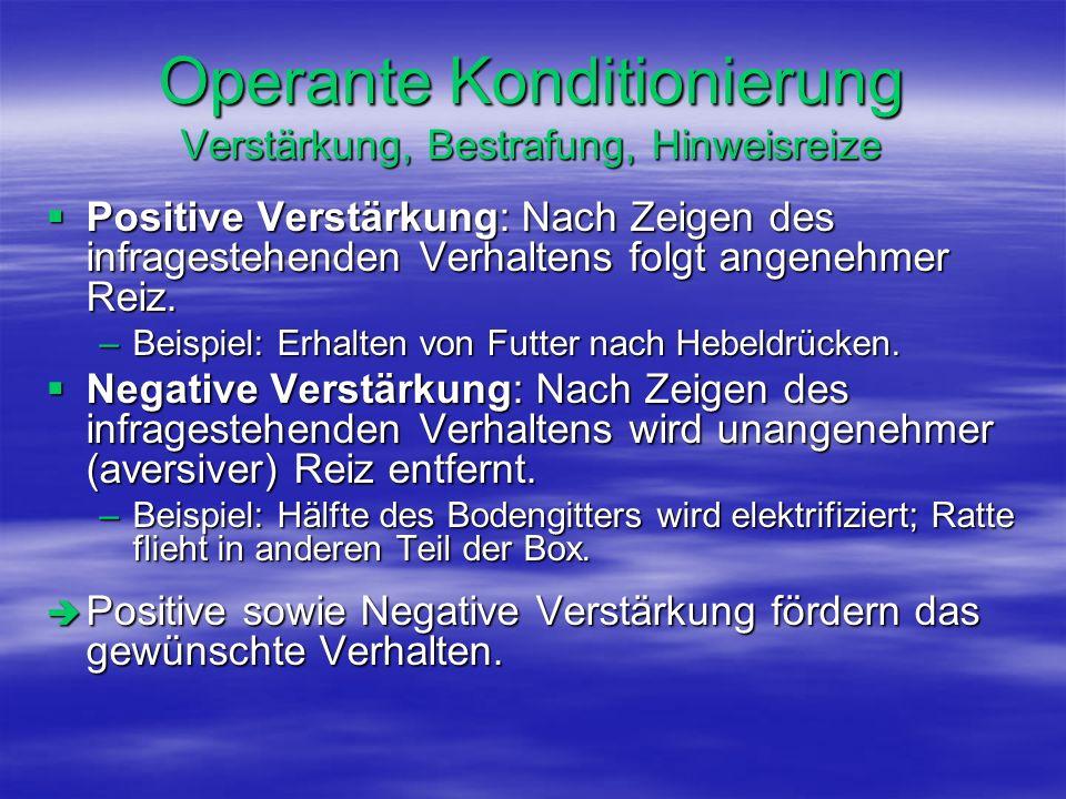 Operante Konditionierung Verstärkung, Bestrafung, Hinweisreize Positive Verstärkung: Nach Zeigen des infragestehenden Verhaltens folgt angenehmer Reiz