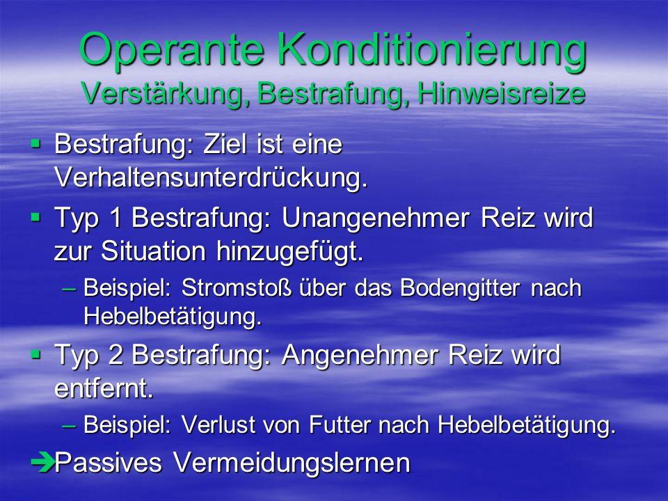Operante Konditionierung Verstärkung, Bestrafung, Hinweisreize Bestrafung: Ziel ist eine Verhaltensunterdrückung. Bestrafung: Ziel ist eine Verhaltens