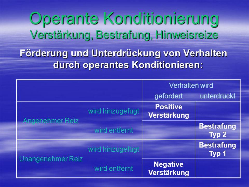 Operante Konditionierung Verstärkung, Bestrafung, Hinweisreize Förderung und Unterdrückung von Verhalten durch operantes Konditionieren: Verhalten wir