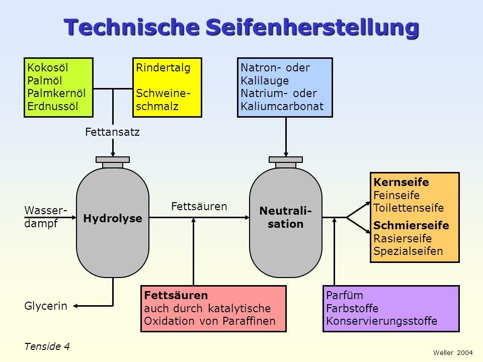 Tenside 5 Weller 2004 Tensid-Teilchen Fettsäureanion (Seife) Alkylbenzolsulfonat Polyglykolether (nichtionogenes Tensid)